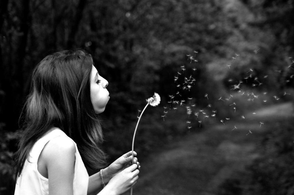 Make a Wish Holistic List