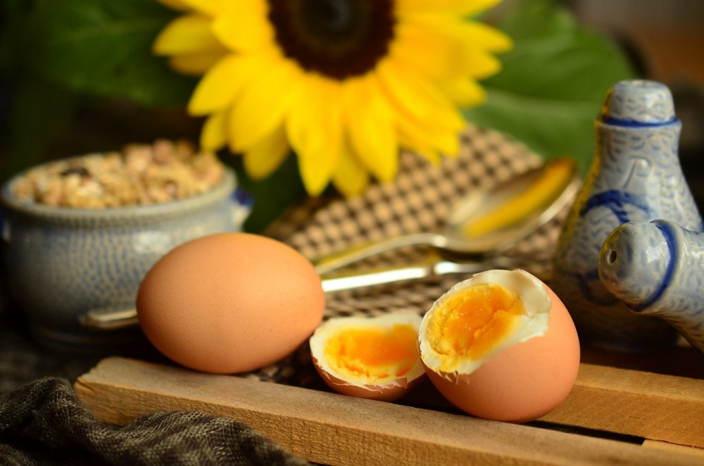 Egg Boiled Holistic List