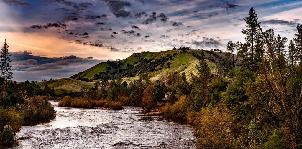 River Nature Holistic List