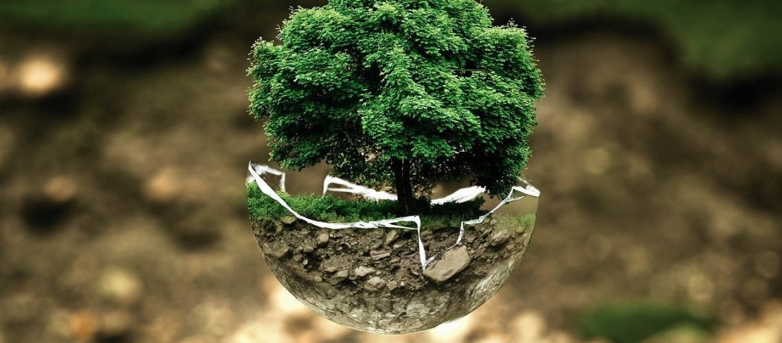 Environmental Protection Holistic List
